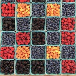 Obst für das Startup bestellen?!