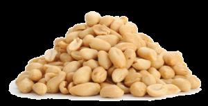 Erdnusskerne (1,90€/150g)
